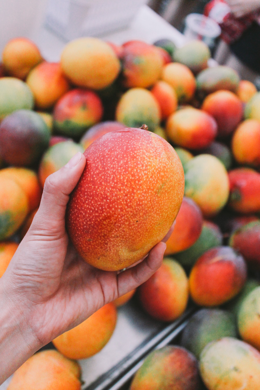 kcc farmer's market | honolulu, hawaii via playswellwithbutter | the kcc farmer's market is easily the top recommendation i'd have for any foodie traveling through oahu. we make our way back year after year because it is truly a food lover's vacation dream: it is the best place to taste hawaiian treats & pick up some food souvenirs to bring back to mainland us & share the taste of aloha with your loved ones.