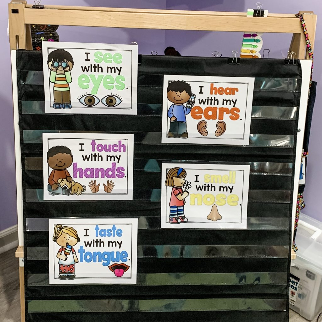 hight resolution of 5 Senses Activities for Preschoolers - Science Centers - Science Center  Investigations