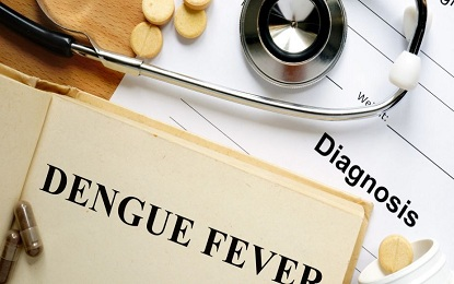 14 Things You Should Know About Dengue Fever