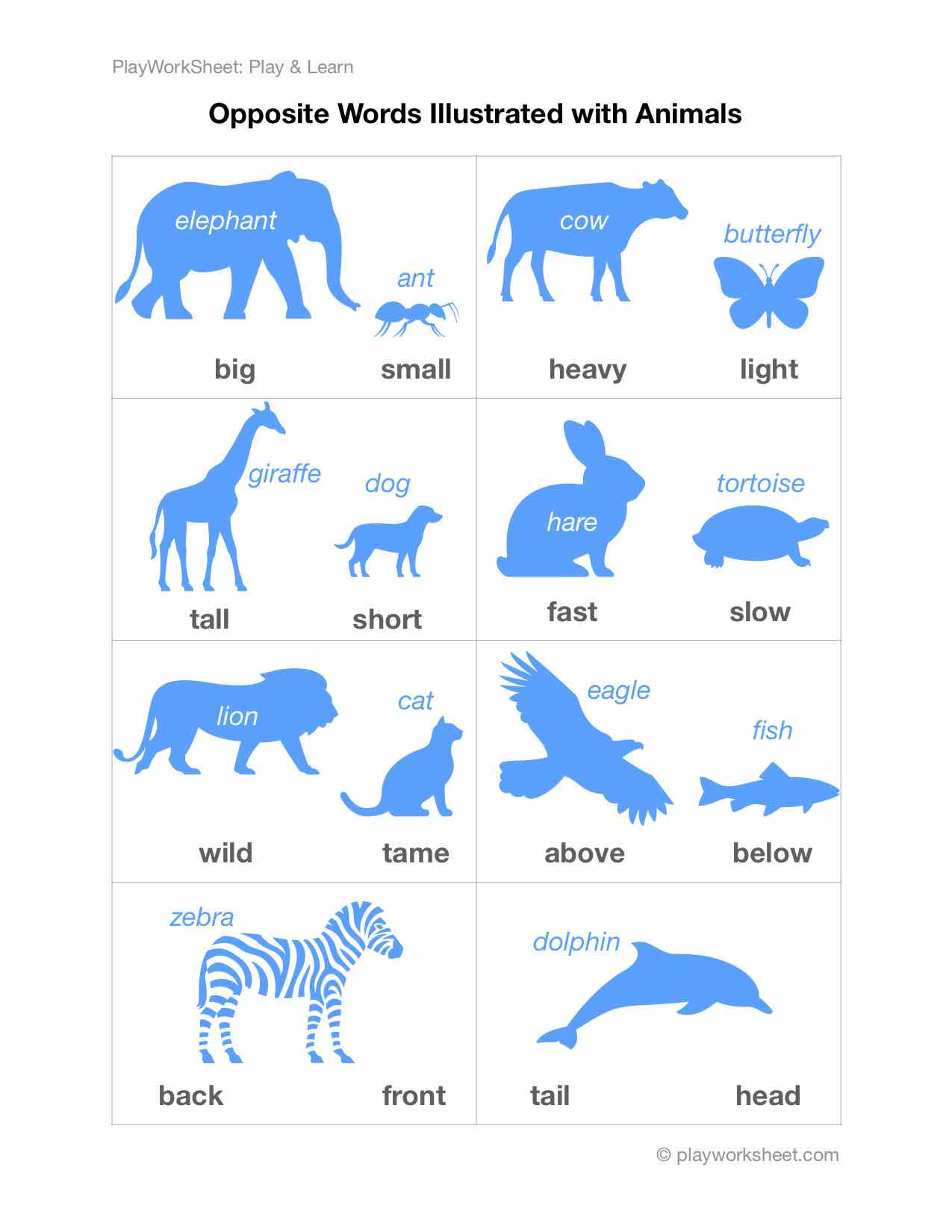 Opposite Words Illustrated With Animals