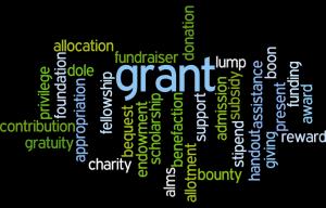 Wordle Grant