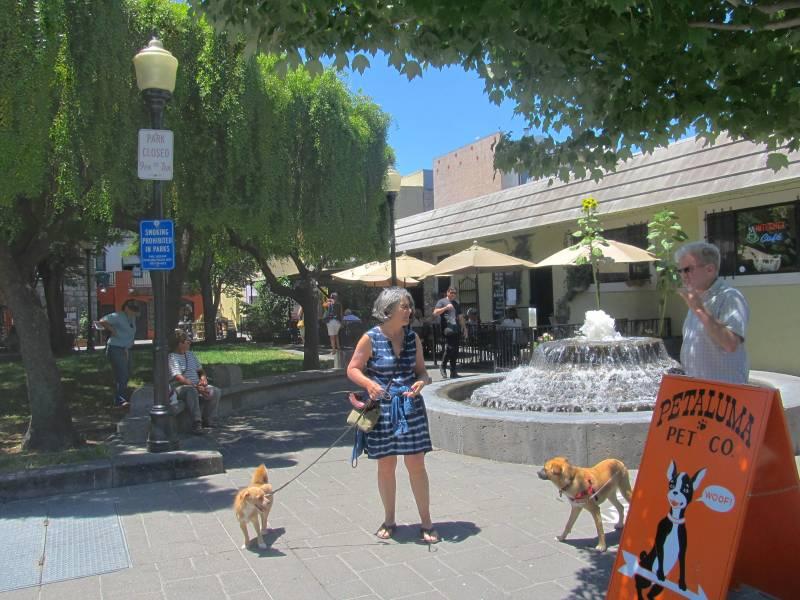Putnam Plaza dogs