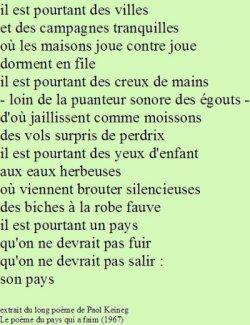 Courir Plusieurs Lièvres à La Fois : courir, plusieurs, lièvres, Réflexions, Gauche, Très, Droite, Qu'adroite.