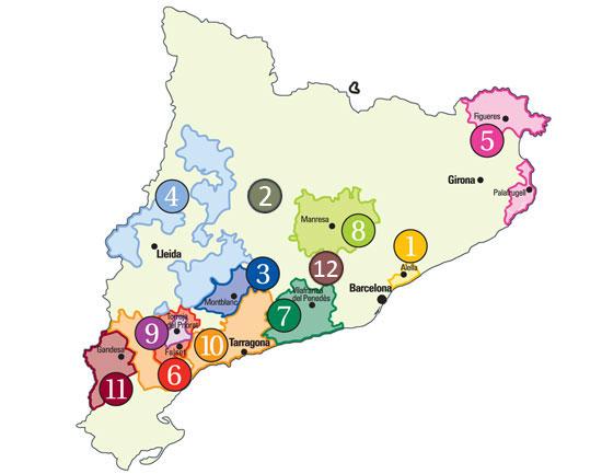 #54 - Map Catalan vineyards