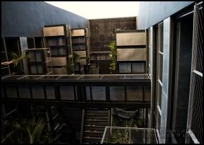 Los pasillos del jardín vertical