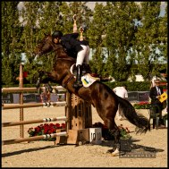 International-Jumping-Competition-2013-Barcelona-1-Picture