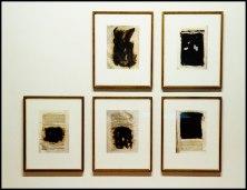 Fotografía tomada por mi, de fotos originales de Joan Fontcuberta en la exposición DELETRIX del Centro de Arte Santa Mónica en Barcelona.