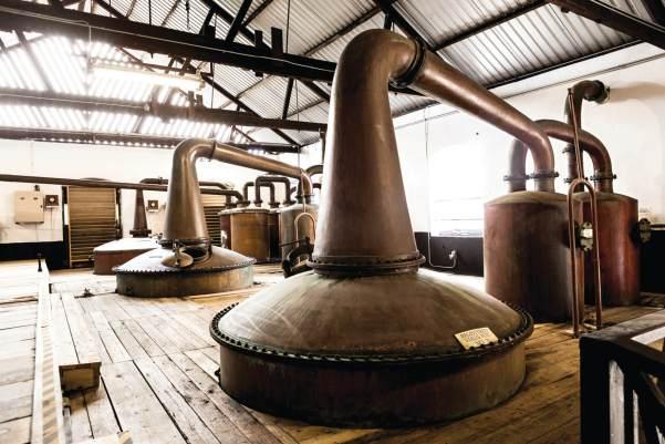 Mount Gay distillerie