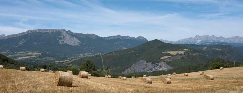 Domaine-Hautes-Glaces-Whisky champ