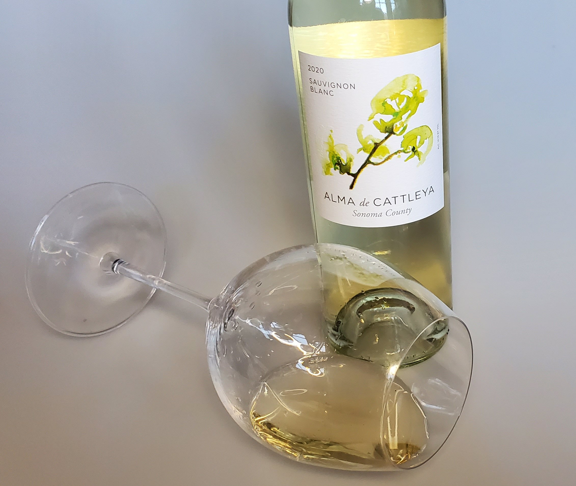 Please The Palate Wine of the Week: Alma de Cattleya 2020 Sauvignon Blanc, Sonoma County