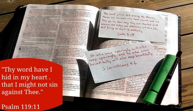 Bible Study-Psalm 119