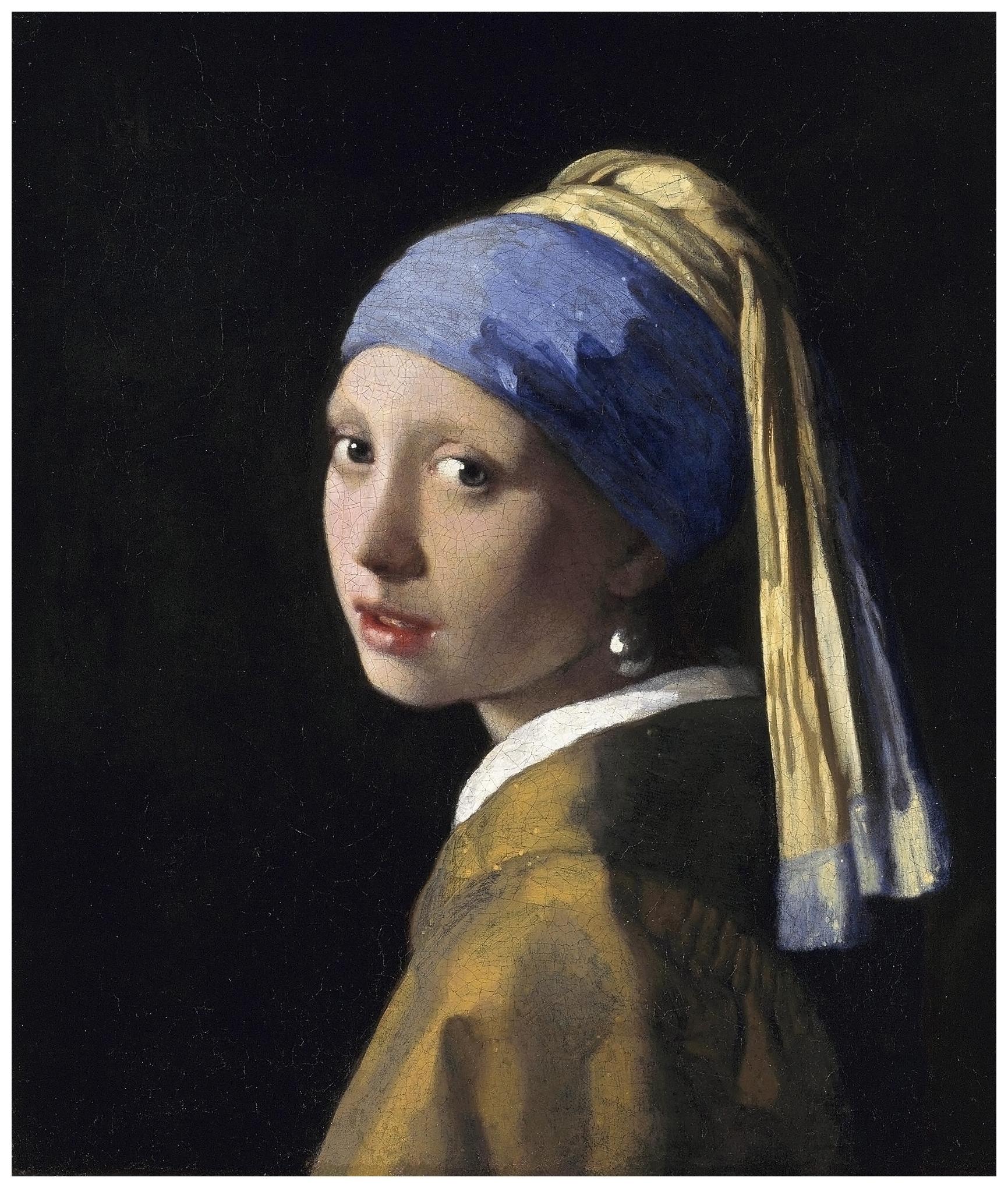 Johannes Vermeer Pleasurephoto
