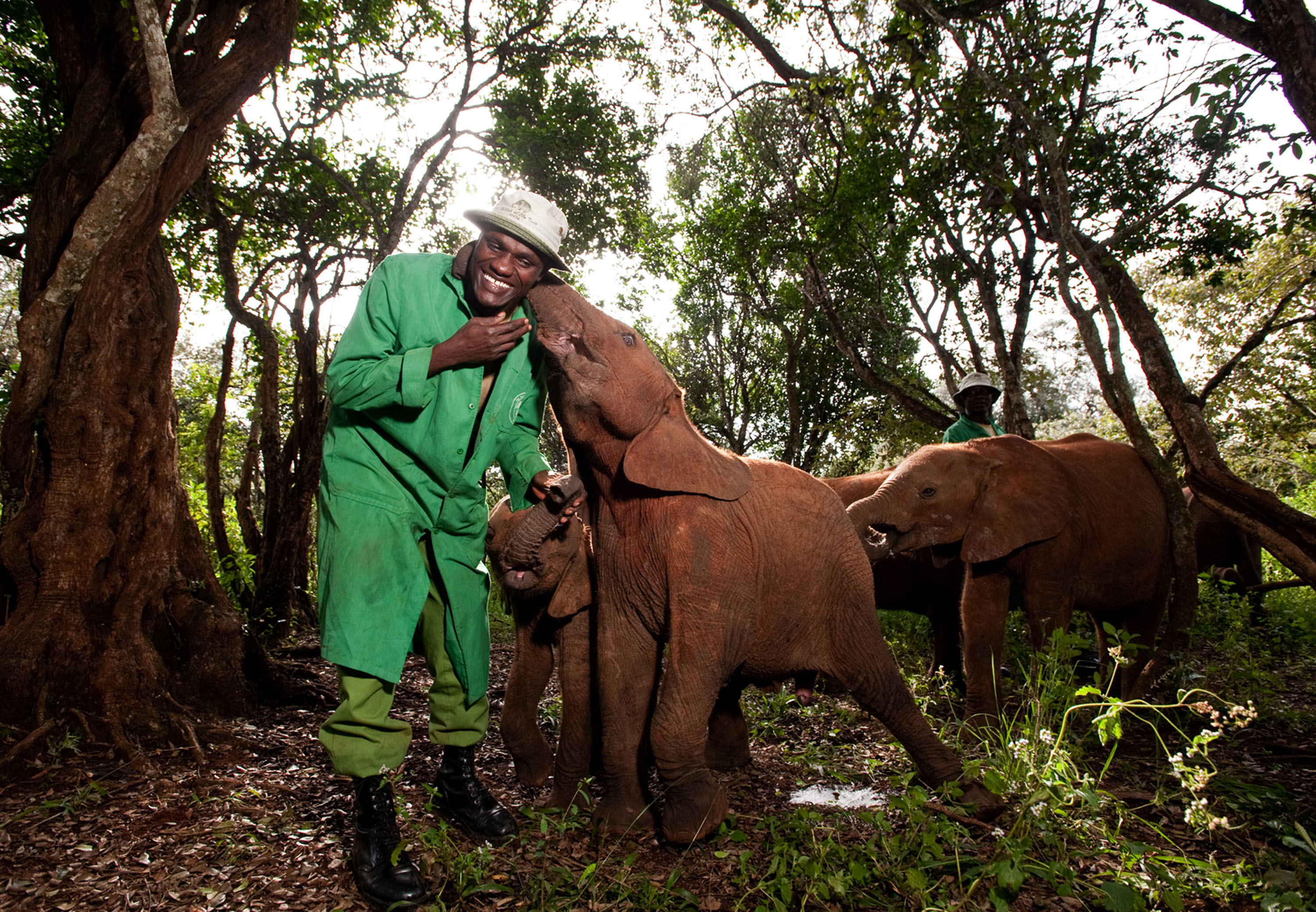 African man in a green coat with 3 baby elephants - one with its trunk around his neck