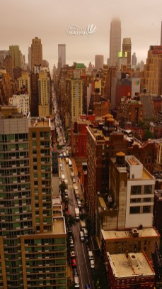 priveliste new york manhattan