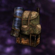 backpack20a