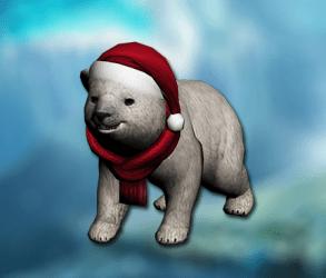 bear_pet