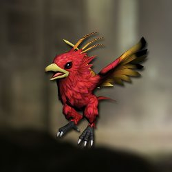 pet_phoenix