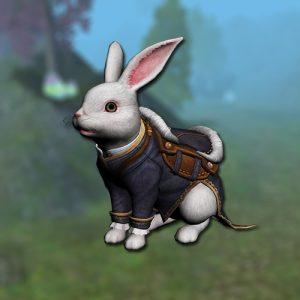 rabbit_mount2