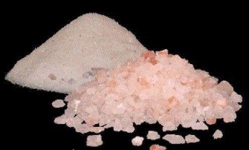 salt facts