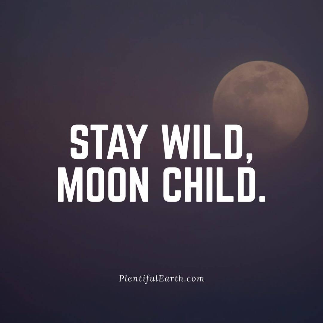 Stay Wild Moon Child Quote Plentiful Earth