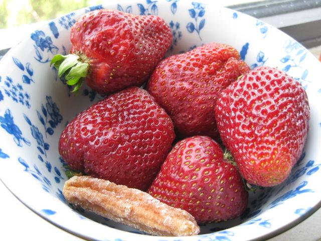 2009_06_27_strawberries