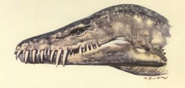 Hydrotherosaurus head painting by Zdenek Burian.