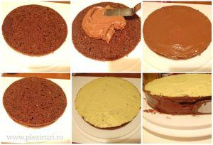 Tort cu ciocolata, alune si fistic