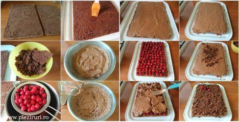 pleziruri - Felii de ciocolata cu visine