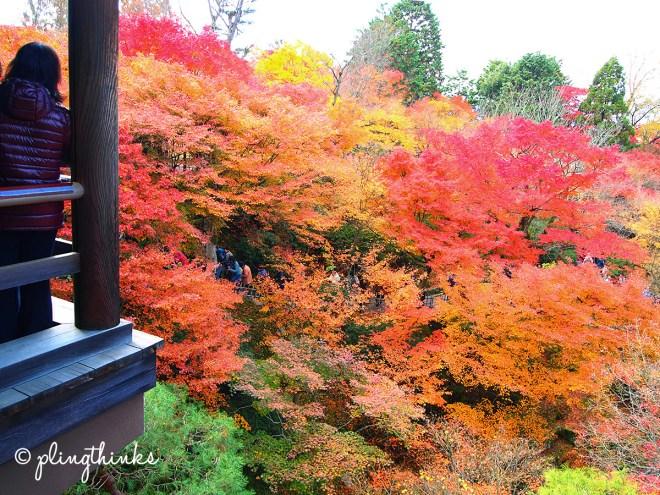 Tofuku-ji Bridge - Tsuten-Kyo - Kyoto Japan