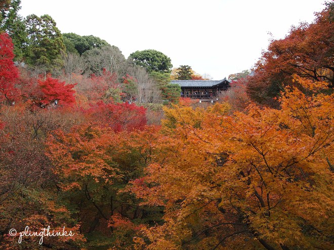 Tofuku-ji Entrance - Autumn in Kyoto Japan