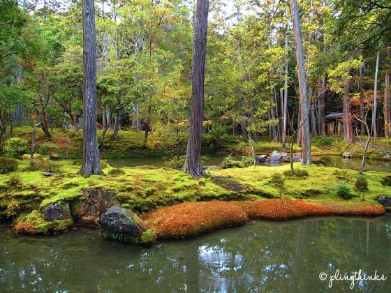 Moss Island Golden Pond - Moss Garden Kyoto