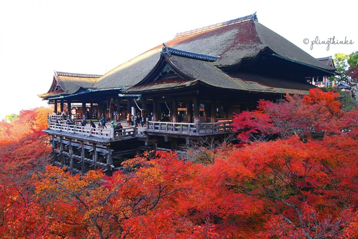 Kiyomizu-dera Autumn Maple Trees - Kyoto Temple