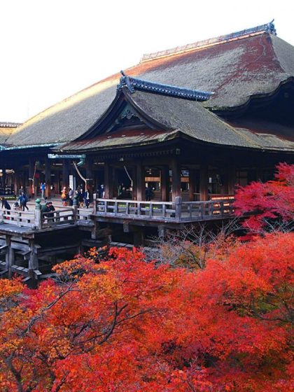 Kiyomizu-dera Autumn Maple Trees - Kyoto Temple