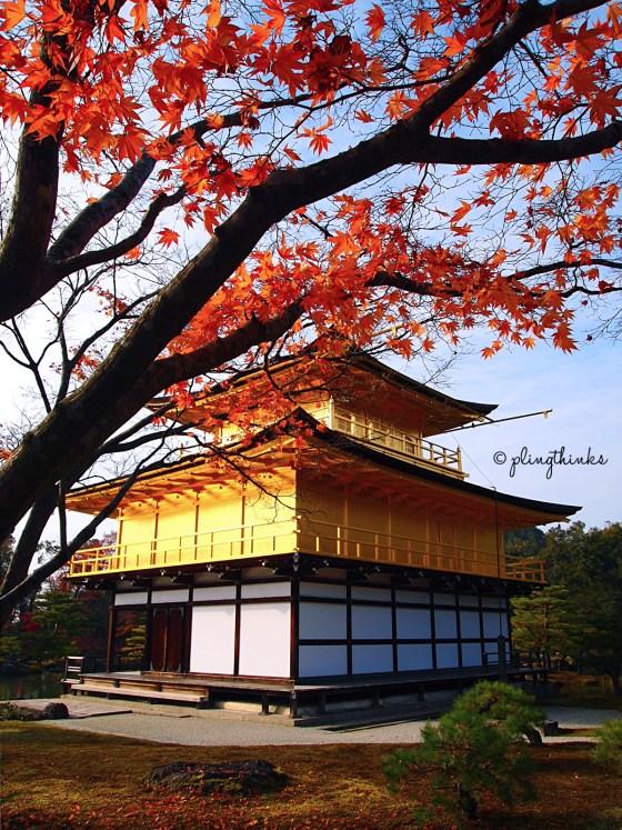 Golden Pavilion Temple Kinkaku-ji - Kyoto Autumn