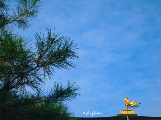 Golden Phoenix - Roof of Kinkakuji Golden Temple Kyoto
