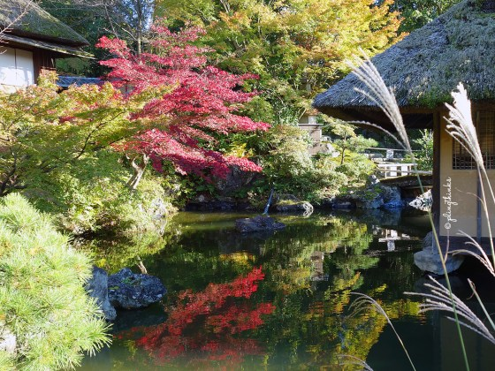 Japanese garden in Inoda Coffee Kiyomizu - Higashiyama Kyoto