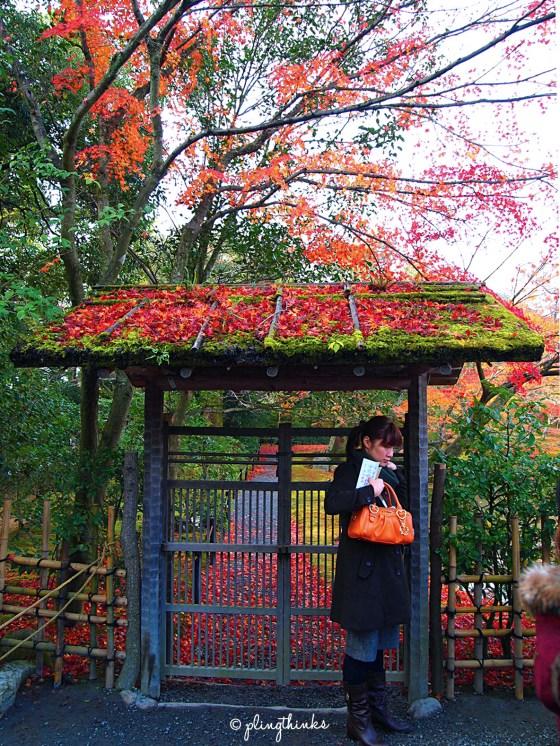 Kinkaku-ji - Wooden Gate with Maple Leaves - Kyoto