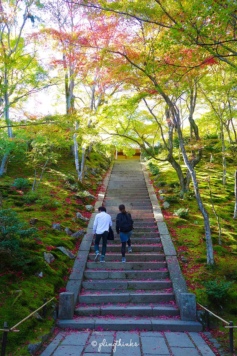 Jojakko-ji Temple Arashiyama - Kyoto Japan