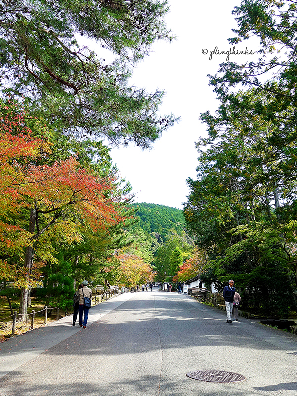 Nanzenji - Temple Entrance Walk Autumn