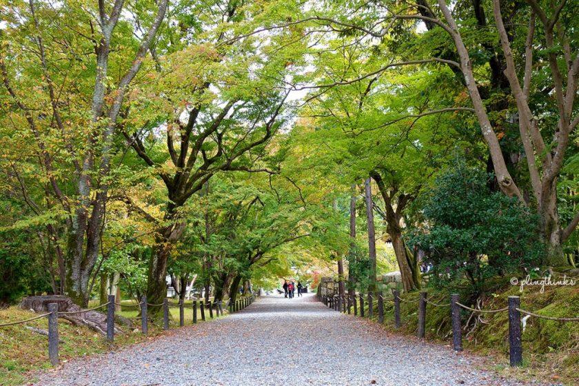 Nanzenji Temple Kyoto - Tree-Lined Exit