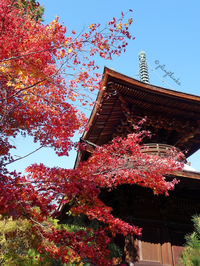 Pagoda Jogakkoji in Autumn - Kyoto Arashiyama