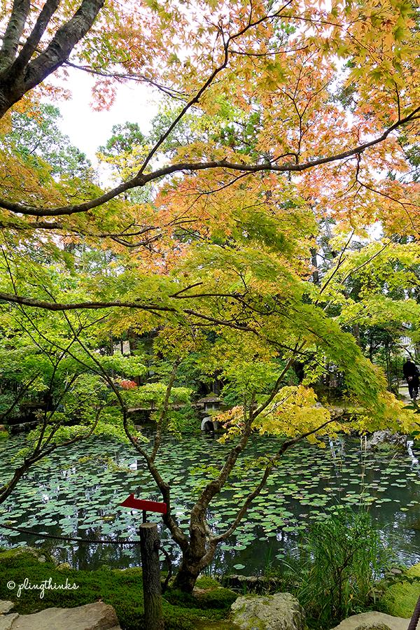 Tenjuan Garden Autumn - Nanzenji Kyoto