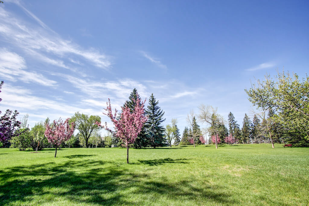 Walking-paths-3339-rideau-place-sw-devonshire-house-condo-calgary-real-estate-for-sale-dennis-plintz-realtor-sothebys-canada