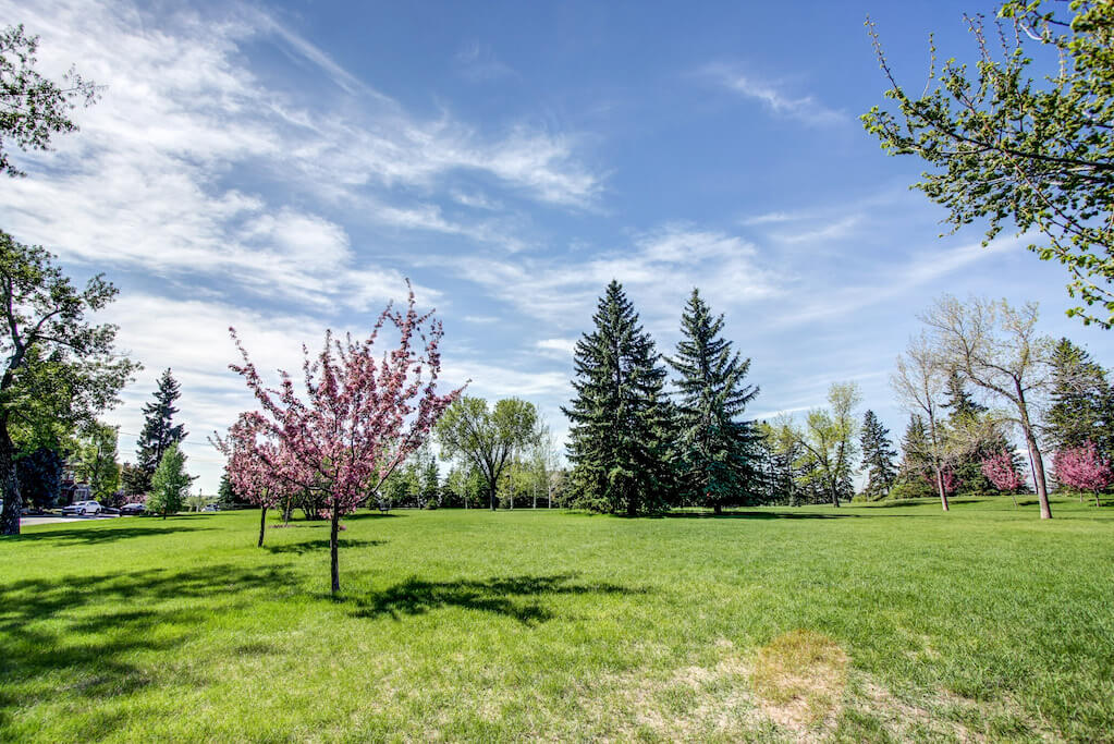 Trees-views-3339-rideau-place-sw-devonshire-house-condo-calgary-real-estate-for-sale-dennis-plintz-realtor-sothebys-canada