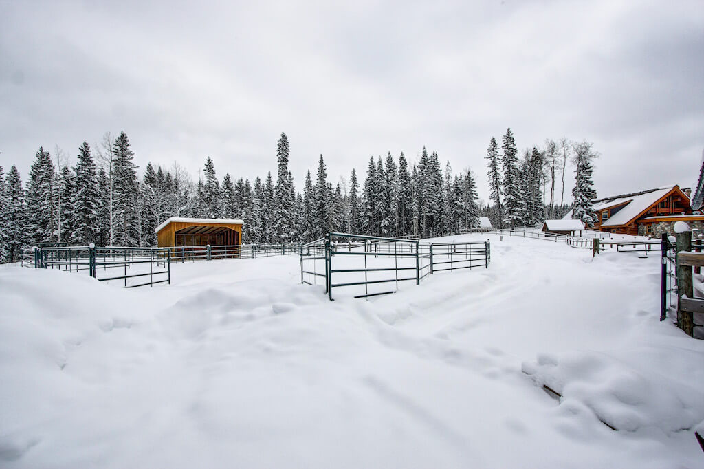 Winter-horse-pen-cattle-corral-352248-Pine-Ridge-Road-Bragg-Creek-Ranch-Acreage-For-Sale-Calgary-Real-Estate-For-Sale-taylor-sothebys-Realtor-Plintz