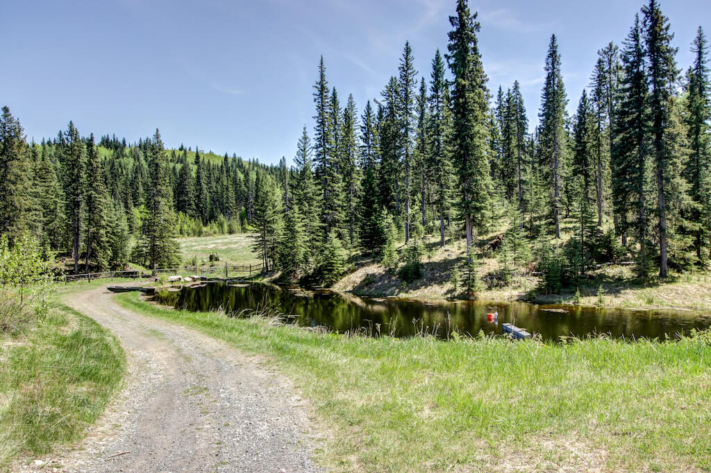 352248-Pine-Ridge-Road-Bragg-Creek-Ranch-Acreage-For-Sale-Calgary-Real-Estate-For-Sale-taylor-sothebys-natural-treed-landscapes-private