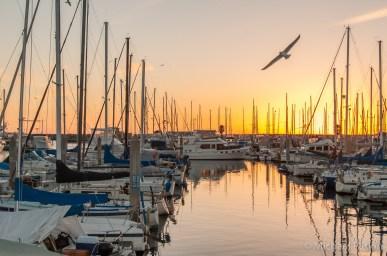 Redondo Beach King Harbor Marina