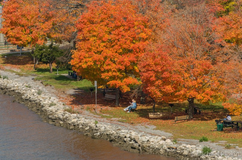 Fall foliage at Waryas Park in Poughkeepsie, NY