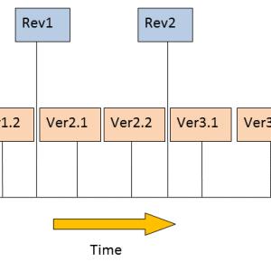 Version Revision