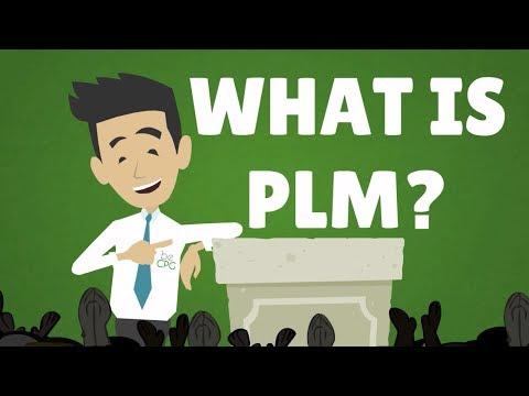 plm nedir
